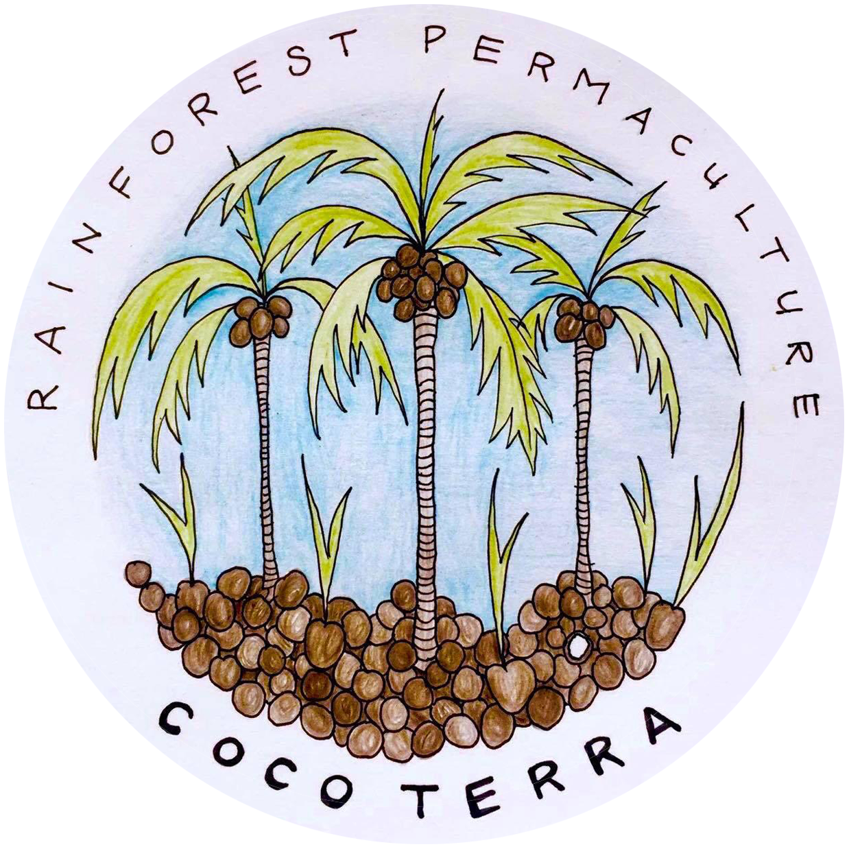 Rainforest Permaculture – Cocoterra